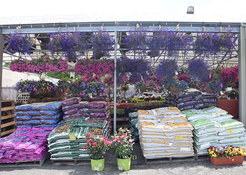 Seasonal Products O'Briens Farm Hill Florist Stoneham MA